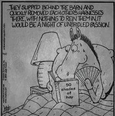Fifty Shades of Hay...LOL... Facebook Jokes, Fifty Shades, Haha, Humor, Funny, Myrtle, Twitter, Board, Ha Ha