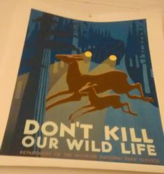 Dont kill wildlife