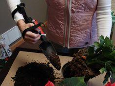 "Using the ""Receive-All: for gardening ~ #handicap #adaptive #gardening"