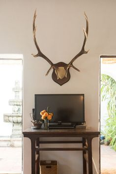 3Casita Somehow the horns with the TV with the really simply stand works together so well. I dig.