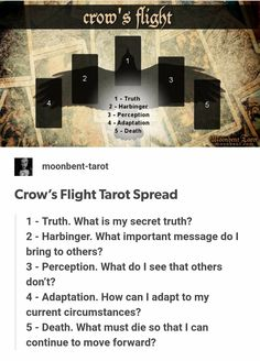 Crow's Flight Tarot Spread
