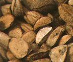 L'olio di Brasil Nut (Bertolletia Excelsa) è straordinariamente ricco di acidi grassi poliinsaturi (70%) tra cui prevalgono Omega 9 e Omega 6, che svolgono una marcata azione idratante e nutriente a lunga durata. L'olio di Brasil Nut è ricco di Vitamina A, B, C ed E attivi contro l'invecchiamento cutaneo.