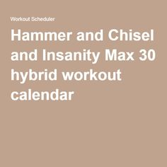 Hammer and Chisel and Insanity Max 30 hybrid workout calendar
