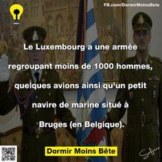 Le Luxembourg a une armée regroupant moins de 1000 hommes, quelques avions ainsi qu'un petit navire de marine situé à Bruges (en Belgique).
