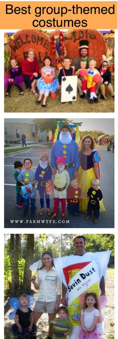 A decade of family-themed costumes - The Farm Wyfe & DIY Wreck-It Ralph Family Costume Ideas for Florida Weather | Travel ...