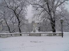 Der verschneite Burggarten ♥ Wien