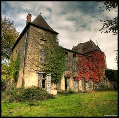 An abandoned home in France.  Love the vines!