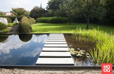 Prachtige natuurlijke zwemvijver in Japans geïnspireerde tuin - Hoog ■ Exclusieve woon- en tuin inspiratie. Farm Pond, Natural Swimming Pools, Rooftop Pool, Garden Architecture, Pool Houses, Water Features, Stepping Stones, Outdoor Gardens, Landscape