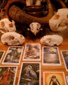 Tarot at the Bone Altar