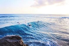 I need to learn to surf #learnsurfing