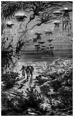 'The Underwater landscape of Crespo Island' .From 'Vingt mille lieues sous les mers / Twenty Thousand Leagues Under the Sea' by Jules Verne, illustrated by Édouard Riou and Alphonse de Neuville, Paris, 1871 Jules Verne, Leagues Under The Sea, Sci Fi Books, Sea Monsters, The Twenties, Science Fiction, Illustrators, Fantasy Art, Steampunk