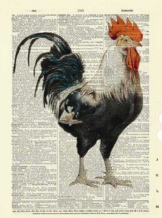 https://www.etsy.com/es/listing/201120789/gallo-diccionario-arte-impresion-arte?ref=related-7