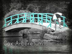 Cox Arboretum (and all the Five Rivers Metroparks), Dayton, Ohio