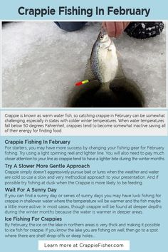 Crappie Fishing In February: For starters, you may have more success by changing your fishing gear for February fishing. Try using a light spinning reel and lighter line. You will also need to pay much closer attention to your line as crappie tend to have a lighter bite during the winter months. Crappie Fishing Tips, Ice Fishing, Ice Shanty, Winter Temperature, Spinning Reels, Winter Months, Starters, Lighter, Closer