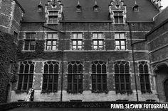 University of Antwerp, Belgia