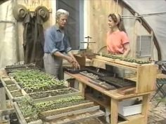 How to build unheated greenhouses for winter harvests & year-round gardening (Video)