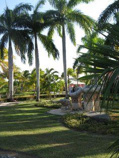 Paradisus Rio de Oro resort in Holguin, Cuba Cuba Cayo Santa Maria, Salvador, Cuba Cars, Holguin, Puerto Rican Culture, Havana Cuba, Puerto Ricans, Travel Memories, Small Island