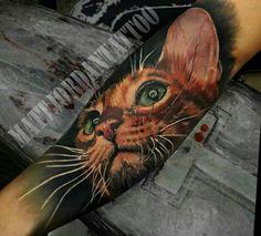 Hyperrealistic cat tattoo