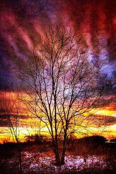 On a Winter Sky - Dayton, Ohio