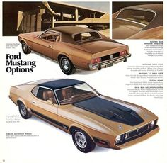 1973 Ford Mustang Ad