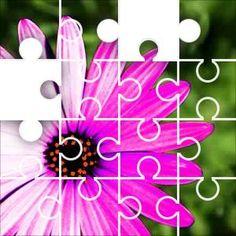 Purple Solar Jigsaw Puzzle, 22 Piece Wavy. Purple flower with extreme