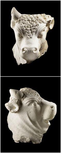 Tête de taureau - PERIOD: 1st century. Empire romain (période) - Haut-Empire romain (27 av J.-C.-235 ap J.-C). DISCOVERY SITE: Baalbek (origine). TECHNIC/MATERIAL: limestone. | Photo (C) Musée du Louvre, Dist. RMN-Grand Palais / Thierry Ollivier