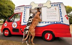 Ice Cream truck for dogs | TheCoolCollector