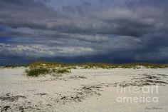 Beautiful shot from Shell Island Florida