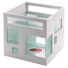 fish apt.