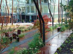 Landscape Architecture Contemporary Landscape, Urban Landscape, Landscape Design, Garden Design, Green Architecture, Landscape Architecture, Urban Park, Urban Furniture, Steel Furniture