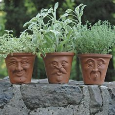 """English Terracotta Face Pots -- for herbs or succulents;  4.25"""" wide, 3.5"""" high."""