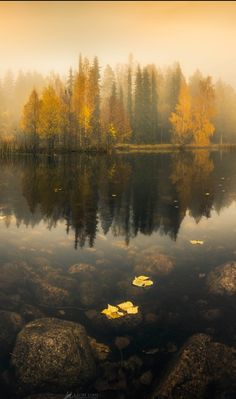 Transparent Mirror III by Lauri Lohi - Photo 125880135 - 500px (Finland)