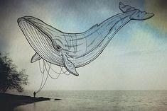 Oceanopraphies - kreative Meerestiere in der Luft | DerTypvonNebenan.de