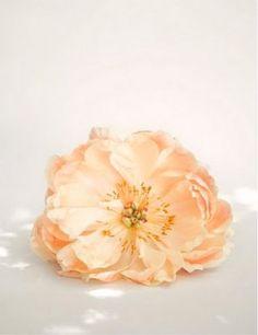 peach #flower