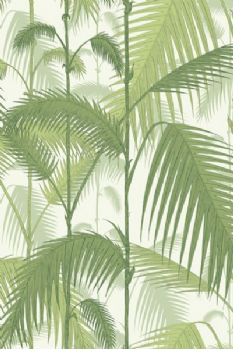 Cole & Son -  Contemporary Restyled - Palm Jungle Wallpaper - Green 951001 Wallpaper Decor, White Wallpaper, Wallpaper Roll, Neutral Wallpaper, Feature Wallpaper, Tropical Wallpaper, Designers Guild, Cole Son, Mulberry Home
