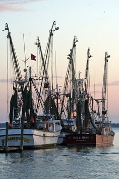 Lowcountry Shrimp Trawlers - http://www.kimmorgangregory.com/LOWCOUNTRYvisions-TRAVEL/Lowcountry-of-South-Carolina/Lowcountry-Shrimp-Trawlers/23926171_vvqGw2#!i=1941137840=nqbgcV2