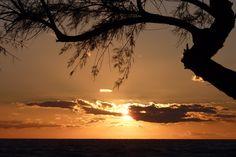 Mallorca Celestial, Sunset, Beautiful, Outdoor, Island, Love, Palms, Majorca, Outdoors