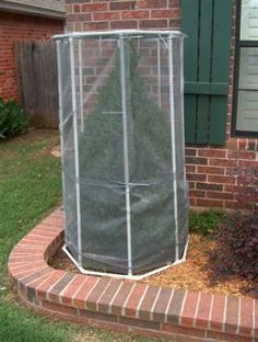 PROJECTS MADE WITH PVC PIPE Really need something like this to protect the plants in the winter!