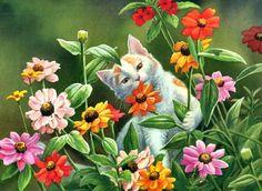 Cat in the Zinnias F - Flowers Wallpaper ID 1968732 - Desktop Nexus Nature