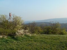 Budapest, Country Roads, Mountains, Nature, Travel, Naturaleza, Viajes, Destinations, Traveling