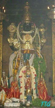 Athi Varadar darshan once in 40 years not to be missed. Hindu Deities, Hinduism, Hanuman Images, Lord Ganesha Paintings, Lord Balaji, Lord Vishnu Wallpapers, Bless The Child, Worship The Lord, Krishna Wallpaper