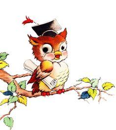 owl from ImagiMeri's