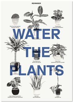 water the plants reminder