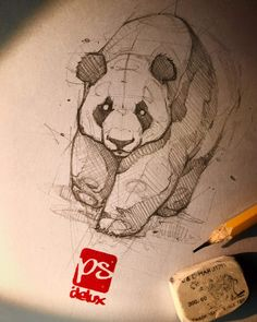 Psdelux is a pencil sketch artist based in Tatabánya, Hungary. He usually draws animal sketches. Psdelux also makes digital drawings. Panda Sketch, Bear Sketch, Panda Drawing, Animal Sketches, Animal Drawings, Drawing Sketches, Art Drawings, Human Figure Drawing, Desenho Tattoo