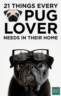 Here are the adorable items every pug lover should have at home