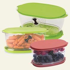Oval Fruit & Vegetable Keepers   Produce Savers   Reuseit   Reuseit