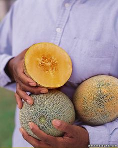 ... Melon on Pinterest | Growing melons, White melon and How to grow