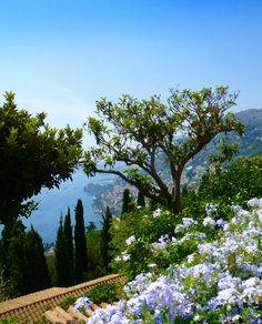 Something to make us all think of summer . A glorious view .Roquebrune-Cap-Martin, South of France Visit France, South Of France, Antibes, Places To Travel, Places To See, Beautiful World, Beautiful Places, Provence France, French Riviera