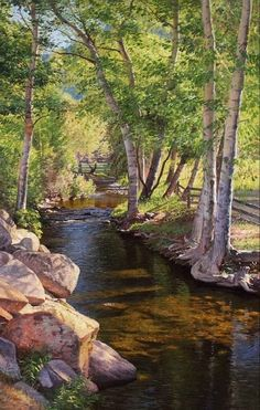 Beautiful birch tree-lined stream winding through the landscape. It looks like oil or acrylic. Gorgeous details (I'm not sure who the artist is). Landscape Photography Tips, Landscape Photos, Landscape Art, Nature Photography, Balloons Photography, Photography Studios, Urban Landscape, Photography Business, Beautiful Places