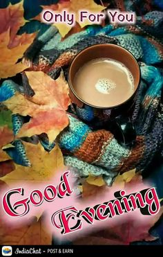Good Evening Photos, Good Evening Wishes, Good Evening Greetings, Evening Pictures, Good Afternoon, Good Morning Good Night, Good Morning Images, Good Morning Quotes, Morning Sayings